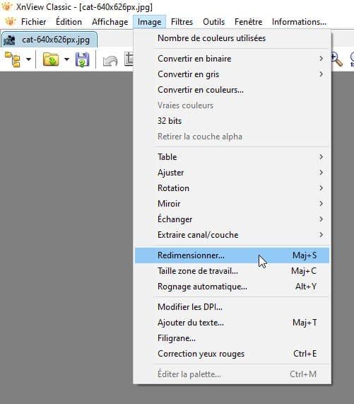 Copie d'écran de XnView montrant comment accéder à la définition d'une image